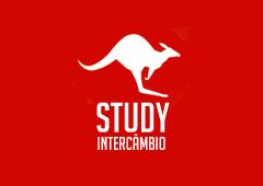 001-logo-study small