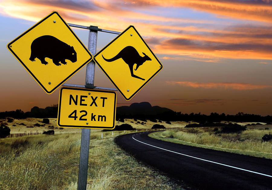 bigstockphoto_Australian_Road_Sign_19483611