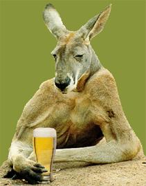 kangaroo beer