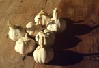 garlic_hires
