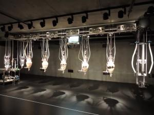 Poo machine, ou, máquina de coco: a atração no museu de arte moderna Mona reproduzia o processo digestivo ao colocar comida no começo da máquina, que saia como um coco (inclusive o cheiro) no fim da máquina